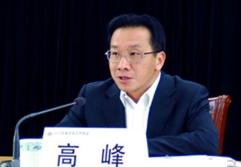 云南副省长高峰:将中医药融入全局谋划