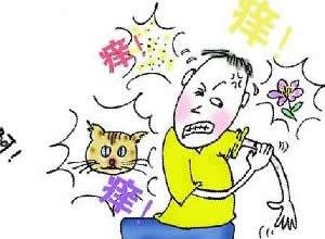 皮肤科病症――湿疹