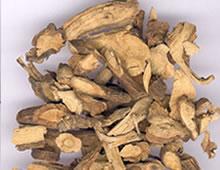 清热药――山豆根