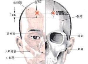 头临泣穴位位置图 头临泣穴的功效作用