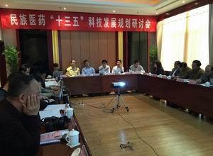 """民族医药""""十三五""""科技发展规划研讨会在文山召开"""