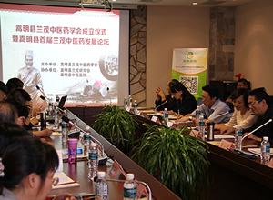 知名中药企业领导及专家为嵩明县兰茂中医药发展献计献策