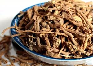 用这三味中药泡茶喝,精力充沛、延缓衰老