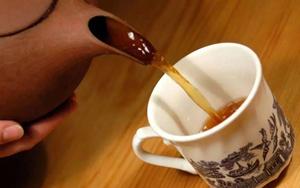 中医科学院教授:只要一杯茶,血压、血脂、血糖通通降!