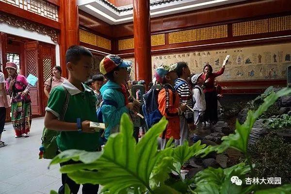 石林县研学之旅正式开启 杏林大观园中医药文化教育成首选